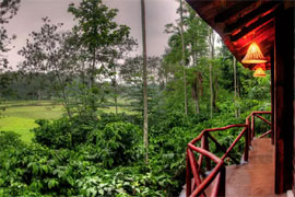 Paddington Resorts Spa coorg exterieur